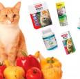 Витамины и лакомства
