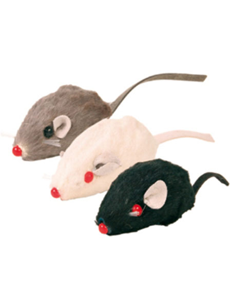 Лёгкие игрушки для кошки